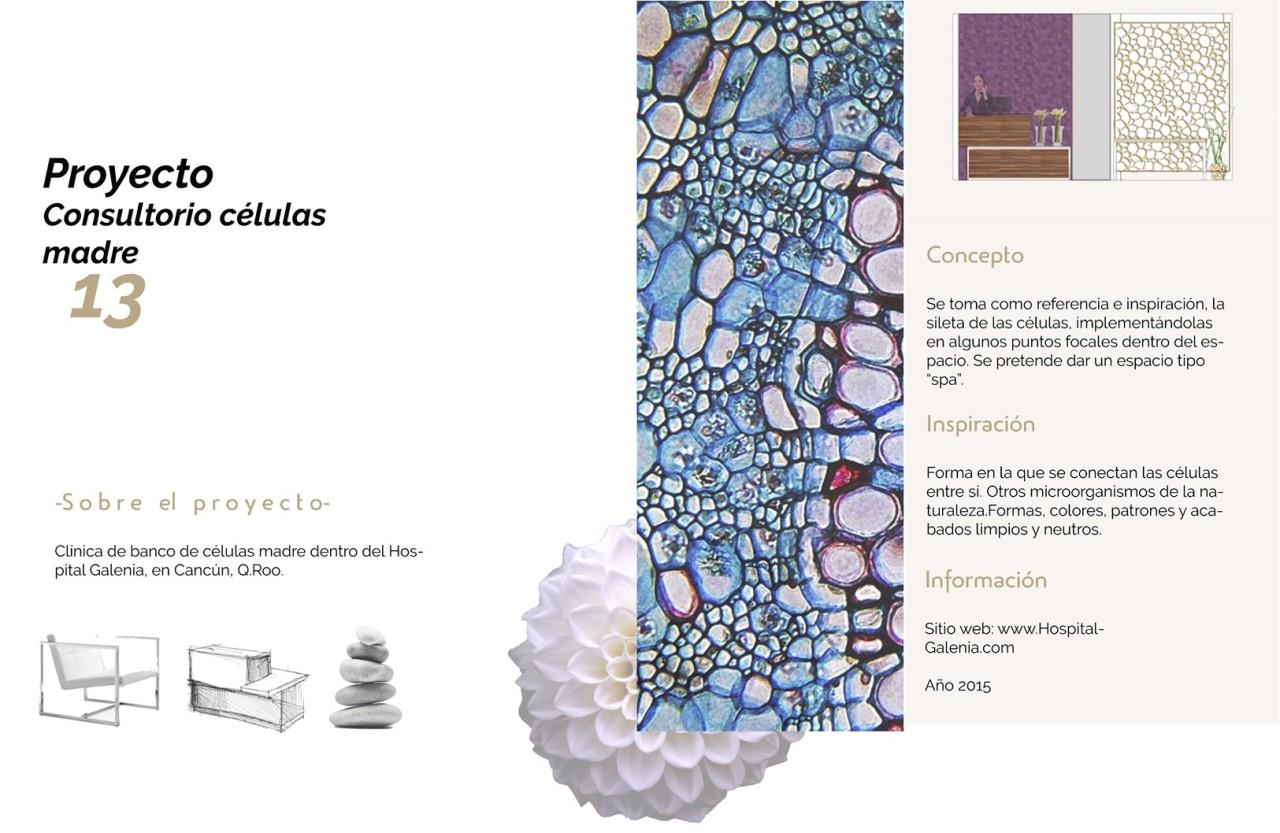 Stem Cell: Diseño deinterior
