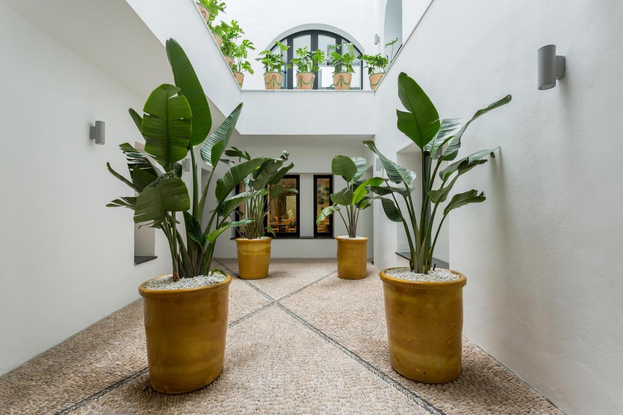 Una joya en Málaga: El Room MateValeria